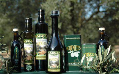 Reconocimiento internacional para Olis Jornets